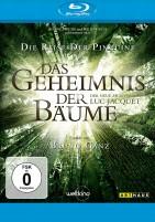 Das Geheimnis der Bäume - 2. Auflage (Blu-ray)