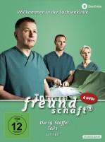 In aller Freundschaft - Staffel 19.1 (DVD)