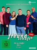 In aller Freundschaft - Staffel 19.2 (DVD)
