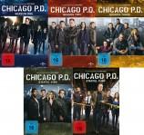Chicago P.D. - Die kompletten Staffeln 1-5 Set (DVD)