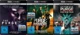 The Purge - Die Säuberung + Anarchy + Election Year / 1-3 - 4K Ultra HD Set (Blu-ray)