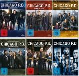 Chicago P.D. - Die kompletten Staffeln 1+2+3+4+5+6 - Set (DVD)