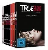 True Blood - Staffel 1+2+3+4+5+6+7 im Set (DVD)