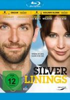 Silver Linings (Blu-ray)