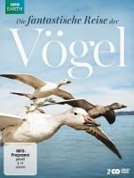 Die fantastische Reise der Vögel (DVD)