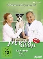 In aller Freundschaft - Staffel 15.2 (DVD)