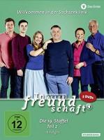 In aller Freundschaft - Staffel 19.2 / Amaray (DVD)