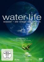 Water Life - Die Wiege des Lebens - Staffel 01 / Folgen 01-15 (DVD)