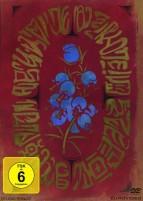 Mary und die Blume der Hexen - Limited Edition (DVD)