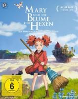 Mary und die Blume der Hexen (Blu-ray)