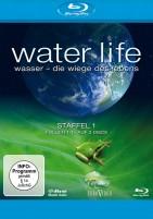 Water Life - Die Wiege des Lebens - Staffel 01 / Folgen 01-15 (Blu-ray)