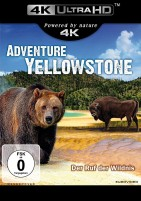 Adventure Yellowstone - Der Ruf der Wildnis - 4K Ultra HD Blu-ray (Ultra HD Blu-ray)