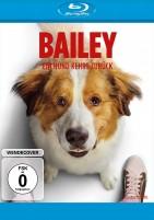 Bailey - Ein Hund kehrt zurück (Blu-ray)