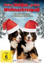 Kleine Helden, großer Weihnachtsspaß (DVD)