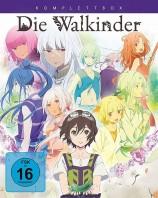 Die Walkinder - Komplettbox (Blu-ray)
