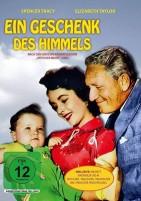 Ein Geschenk des Himmels (DVD)