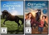 Ostwind 1-5 im Set (DVD)