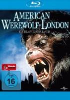 American Werewolf - Fürchte den Mond (Blu-ray)