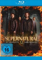 Supernatural - Season 12 (Blu-ray)
