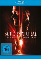 Supernatural - Season 13 (Blu-ray)