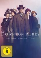 Downton Abbey - Staffel 05 (DVD)