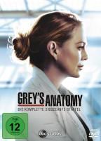 Grey's Anatomy - Die jungen Ärzte - Season 17 (DVD)