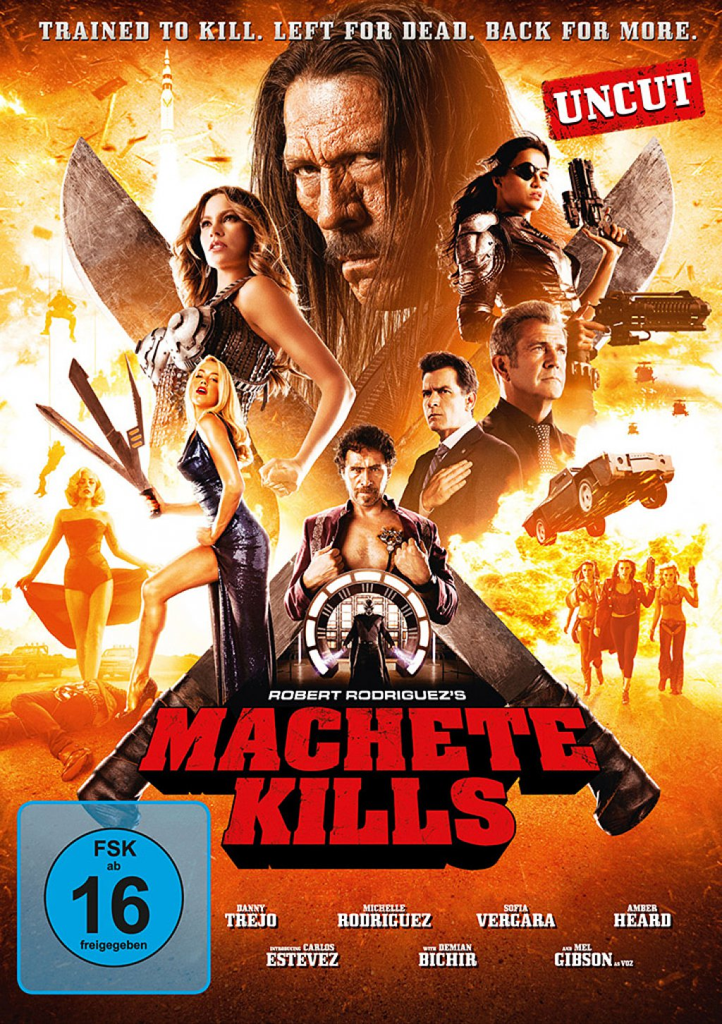 Machete Kills (DVD)