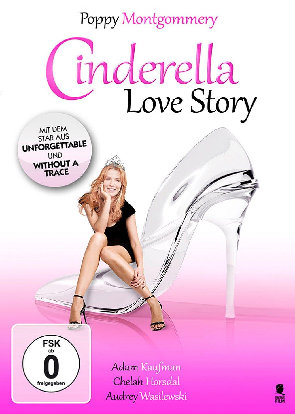 Cinderella Love Story (DVD)