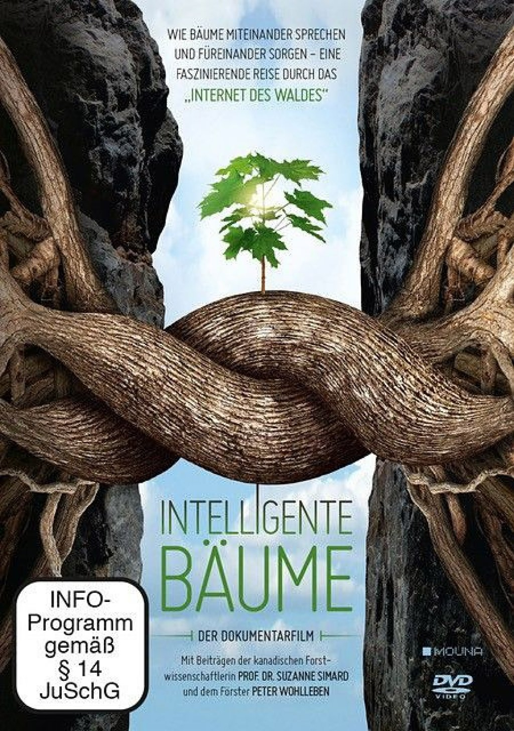 Intelligente Bäume (DVD)