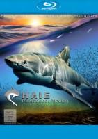 Haie - Monster der Medien (Blu-ray)