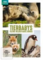 Tierbabys - Kleine Helden ganz gross (DVD)