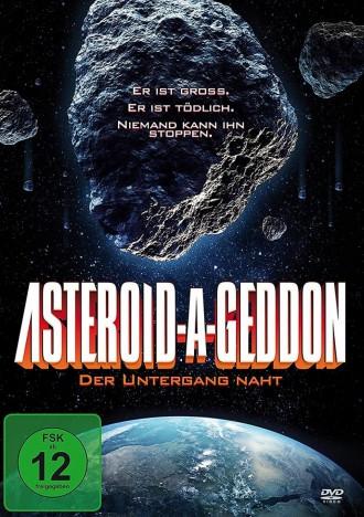 Asteroid-A-Geddon - Der Untergang naht (DVD)