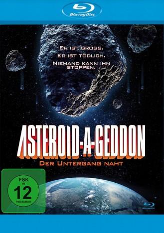 Asteroid-A-Geddon - Der Untergang naht (Blu-ray)
