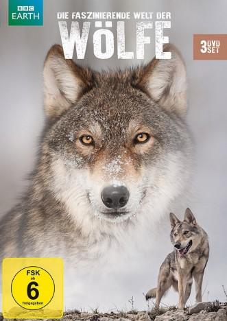 Wölfe In Der Prignitz