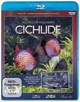 Tropische Aquarien - Cichlide (Blu-ray)