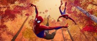 Spider-Man: A New Universe (Blu-ray)