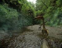 IMAX - Dinosaurier 3D - Fossilien zum Leben erweckt! - Blu-ray 3D (Blu-ray)