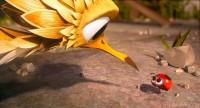Sam O'Cool - Ein schräger Vogel hebt ab - For Kids! (DVD)